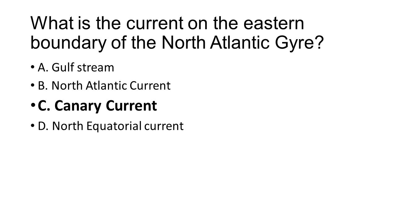 What is the current on the eastern boundary of the North Atlantic Gyre.