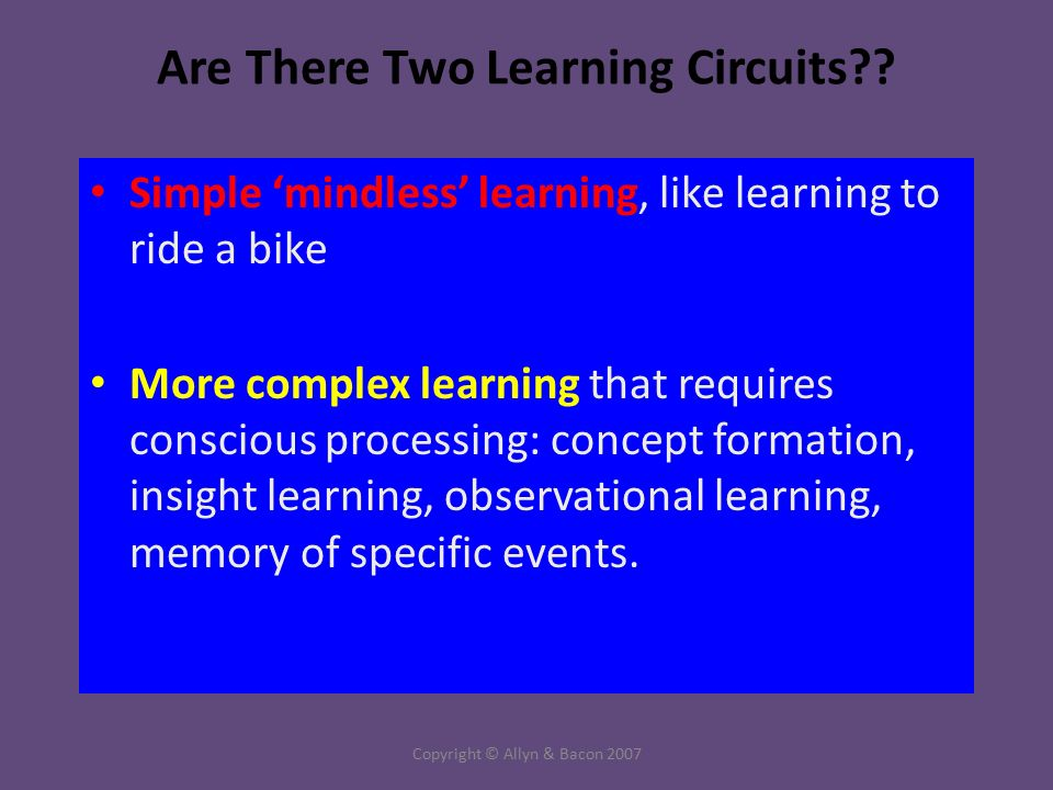 Copyright © Allyn & Bacon 2007 Are There Two Learning Circuits .