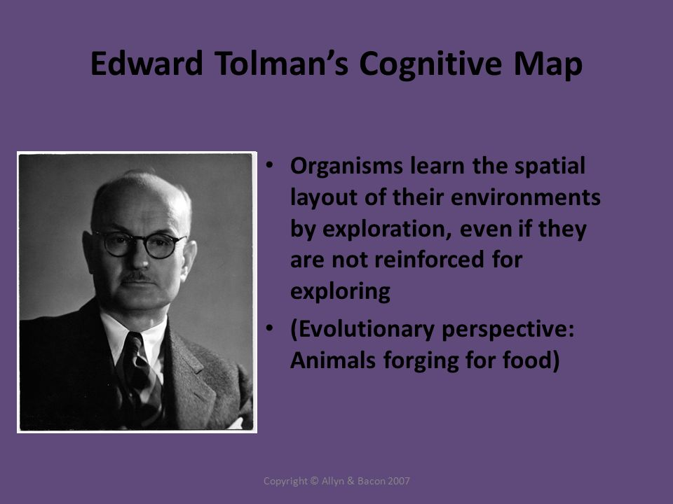 Copyright © Allyn & Bacon 2007 Edward Tolman's Cognitive Map Organisms learn the spatial layout of their environments by exploration, even if they are not reinforced for exploring (Evolutionary perspective: Animals forging for food)