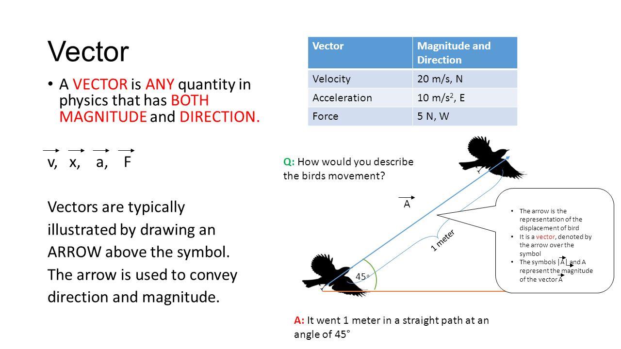 Problem Solving Exercises Conceptual Physics  Euclidean