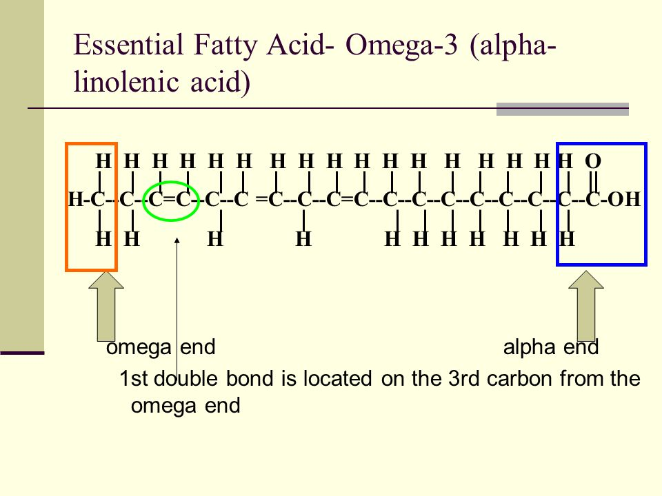Essential Fatty Acid- Omega-3 (alpha- linolenic acid) omega endalpha end 1st double bond is located on the 3rd carbon from the omega end H H H H H H H H H H H H H H H H H O H-C--C--C=C--C--C =C--C--C=C--C--C--C--C--C--C--C--C-OH H H H H H H H H H H H