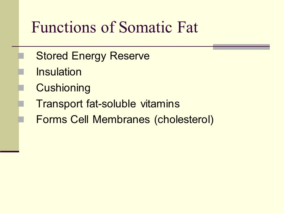 Functions of Somatic Fat Stored Energy Reserve Insulation Cushioning Transport fat-soluble vitamins Forms Cell Membranes (cholesterol)