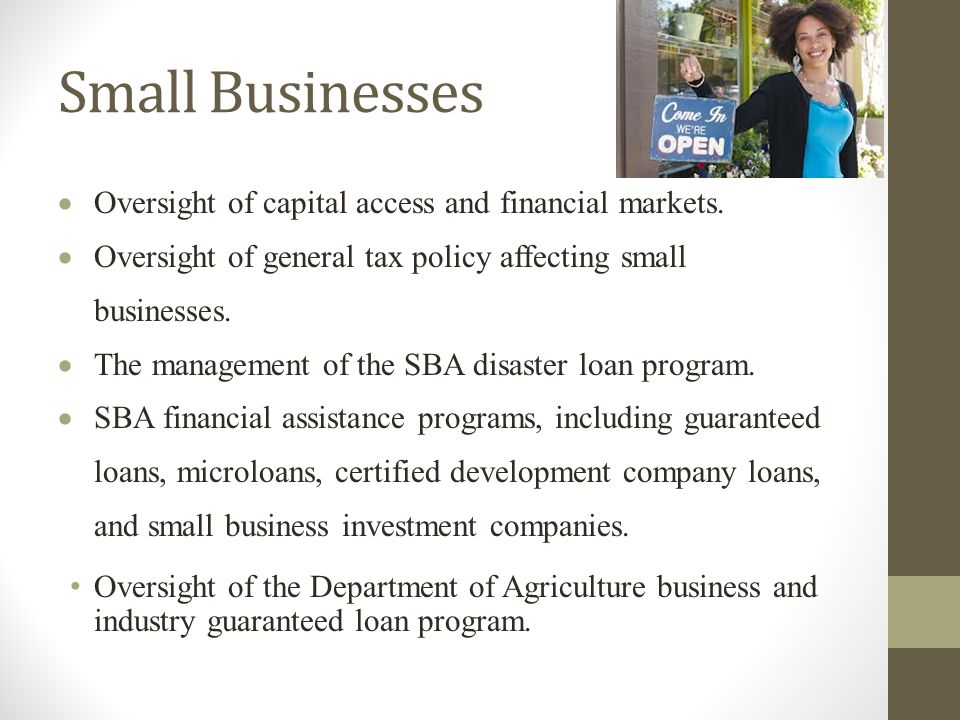 Small Businesses  Oversight of capital access and financial markets.