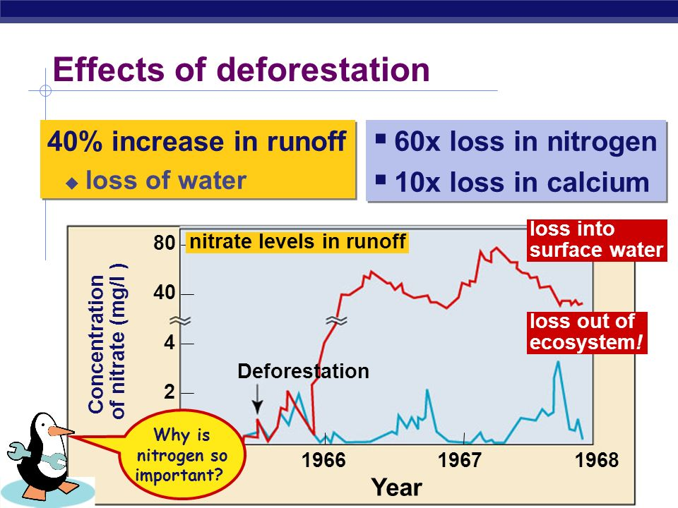 Breaking the water cycle  Deforestation breaks the water cycle  groundwater is not transpired to the atmosphere, so precipitation is not created forest  desert desertification