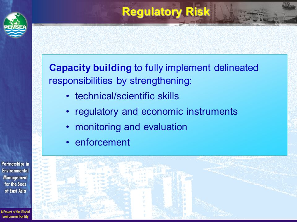 Capacity building to fully implement delineated responsibilities by strengthening: technical/scientific skills regulatory and economic instruments monitoring and evaluation enforcement Regulatory Risk