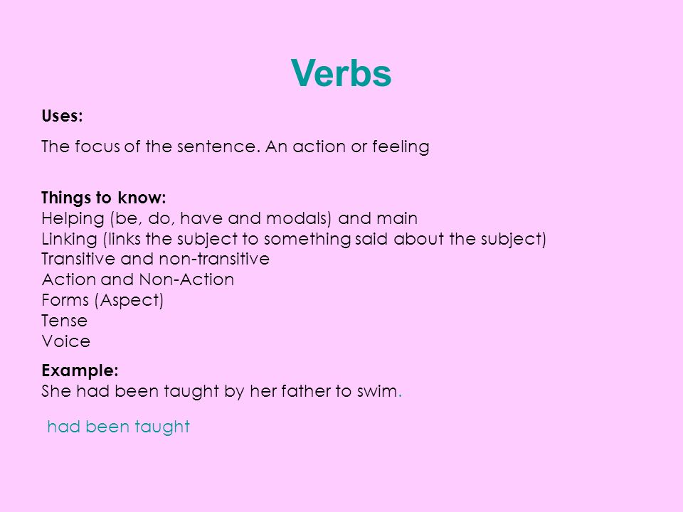 Verbs Uses: The focus of the sentence.