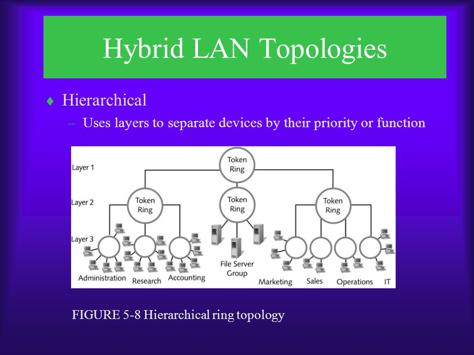 Hybrid LAN Topologies  Hierarchical –Uses layers to separate devices by their priority or function FIGURE 5-8 Hierarchical ring topology