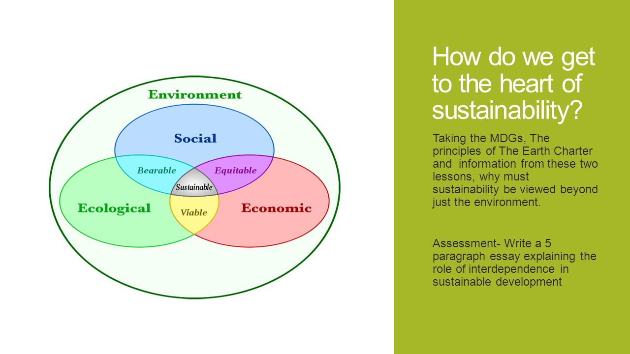 essay on environment and sustainable development Dva1501- sustainable development need essay sample according to 1987 report of the world commission on environment and development, sustainable.
