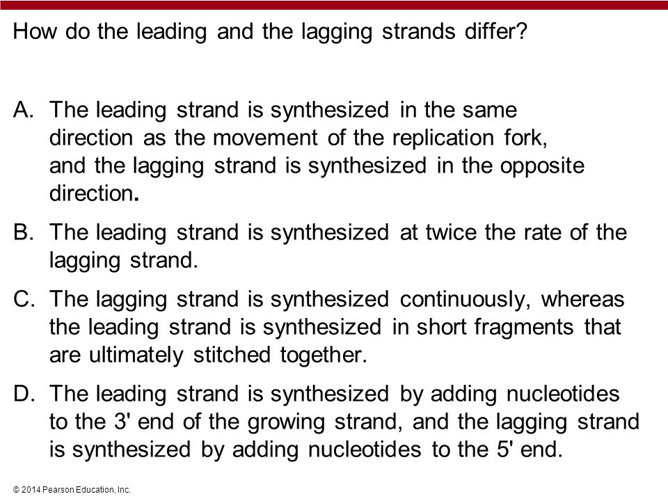 © 2014 Pearson Education, Inc. How do the leading and the lagging strands differ.