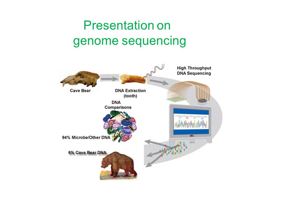 Presentation on genome sequencing