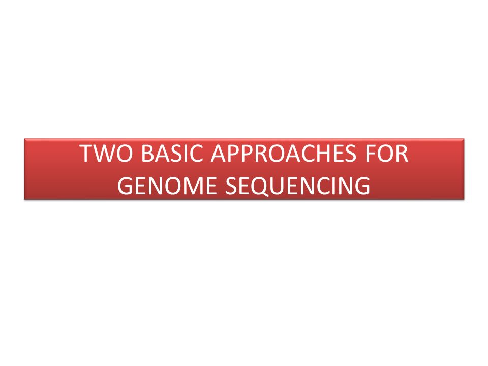 TWO BASIC APPROACHES FOR GENOME SEQUENCING