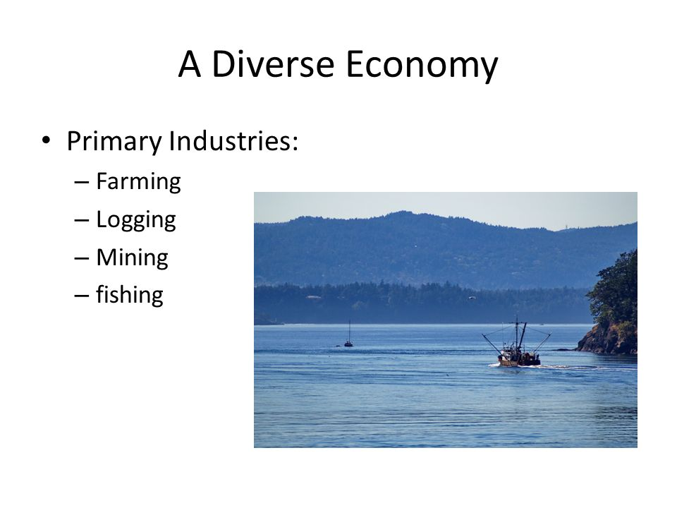 A Diverse Economy Primary Industries: – Farming – Logging – Mining – fishing