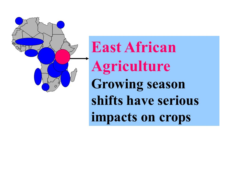 East African Agriculture Growing season shifts have serious impacts on crops