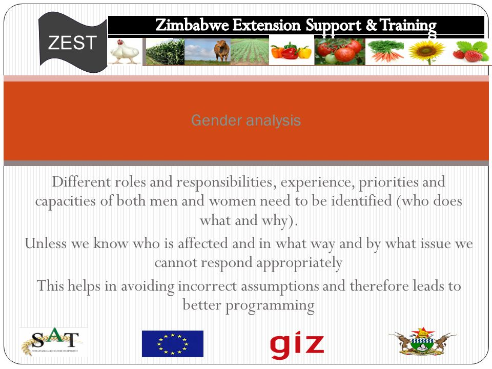 ZEST Different roles and responsibilities, experience, priorities and capacities of both men and women need to be identified (who does what and why).