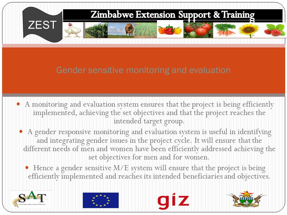 ZEST A monitoring and evaluation system ensures that the project is being efficiently implemented, achieving the set objectives and that the project reaches the intended target group.