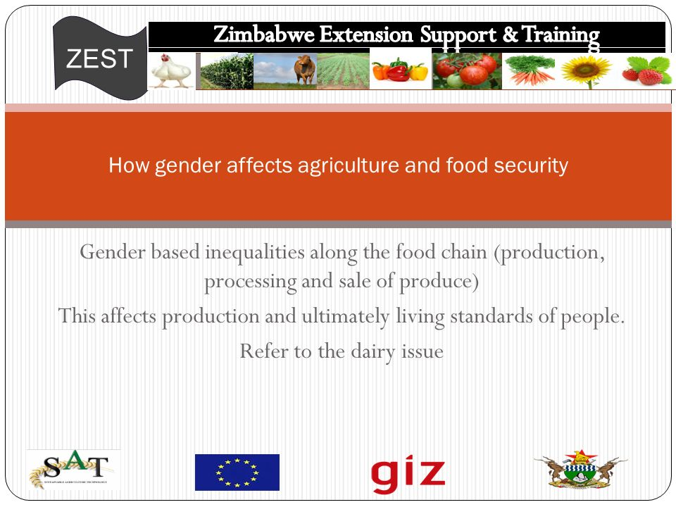 ZEST Gender based inequalities along the food chain (production, processing and sale of produce) This affects production and ultimately living standards of people.