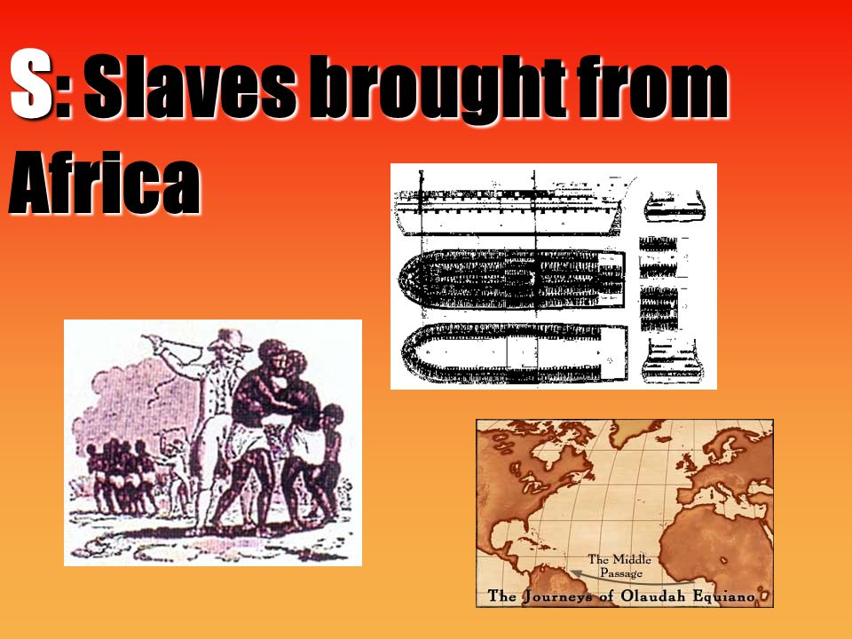 S : Slaves brought from Africa