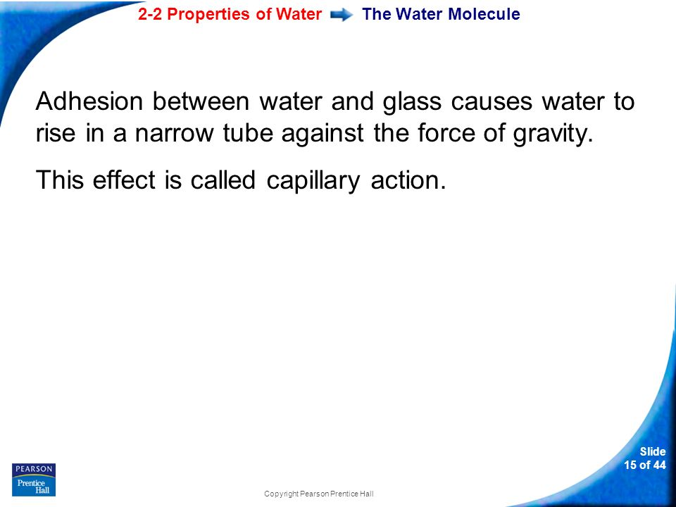 2-2 Properties of Water Slide 15 of 44 Copyright Pearson Prentice Hall The Water Molecule Adhesion between water and glass causes water to rise in a narrow tube against the force of gravity.