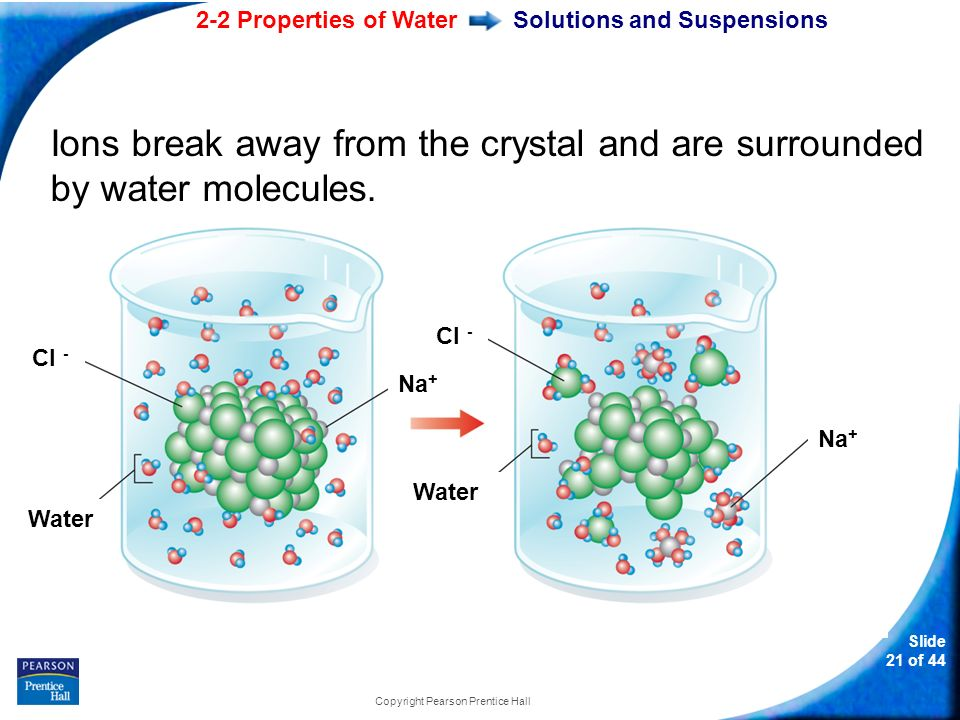 2-2 Properties of Water Slide 21 of 44 Copyright Pearson Prentice Hall Solutions and Suspensions Ions break away from the crystal and are surrounded by water molecules.