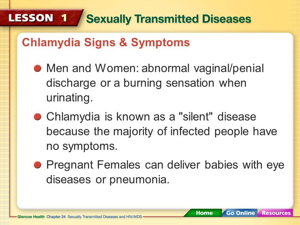 essay on chlamydia