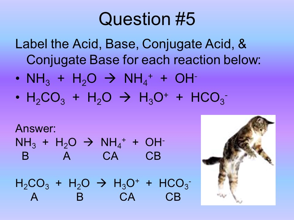 Question #5 Label the Acid, Base, Conjugate Acid, & Conjugate Base for each reaction below: NH 3 + H 2 O  NH OH - H 2 CO 3 + H 2 O  H 3 O + + HCO 3 - Answer: NH 3 + H 2 O  NH OH - B A CA CB H 2 CO 3 + H 2 O  H 3 O + + HCO 3 - A B CA CB