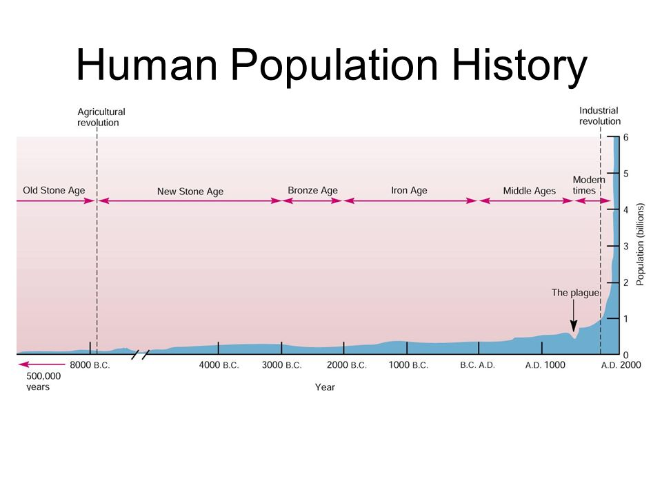 copy of human population The world population at mid-2017 was an estimated 75 billion of that total, africa accounted for 13 billion people, compared with 1 billion in the americas.
