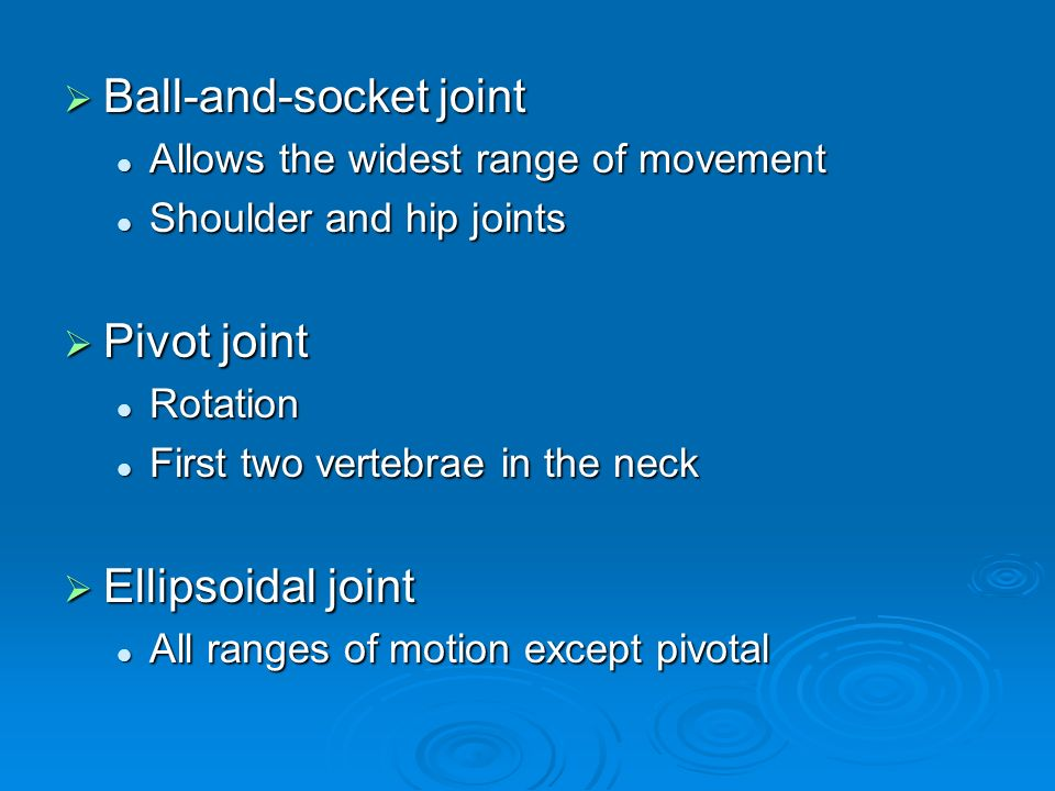  Ball-and-socket joint Allows the widest range of movement Allows the widest range of movement Shoulder and hip joints Shoulder and hip joints  Pivot joint Rotation Rotation First two vertebrae in the neck First two vertebrae in the neck  Ellipsoidal joint All ranges of motion except pivotal All ranges of motion except pivotal