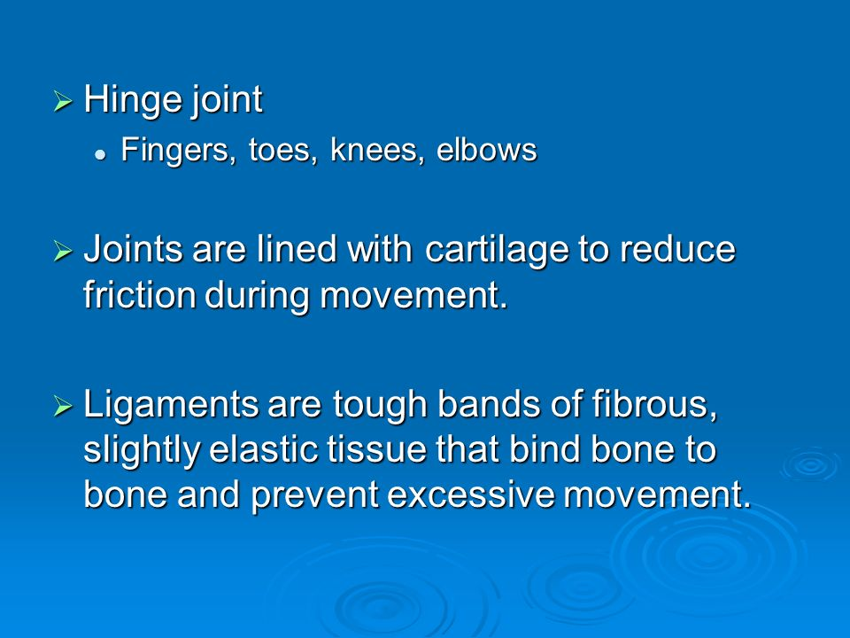  Hinge joint Fingers, toes, knees, elbows Fingers, toes, knees, elbows  Joints are lined with cartilage to reduce friction during movement.