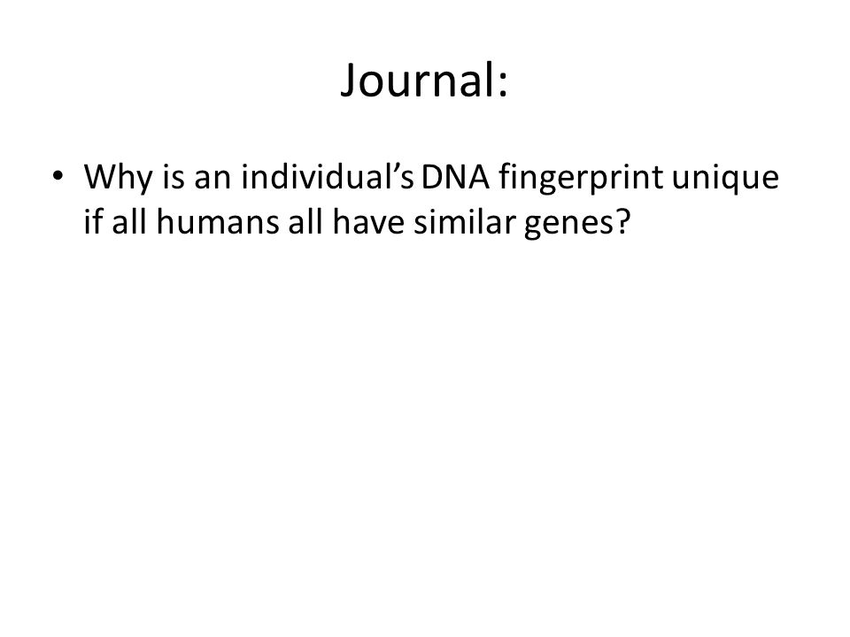 Journal: Why is an individual's DNA fingerprint unique if all humans all have similar genes