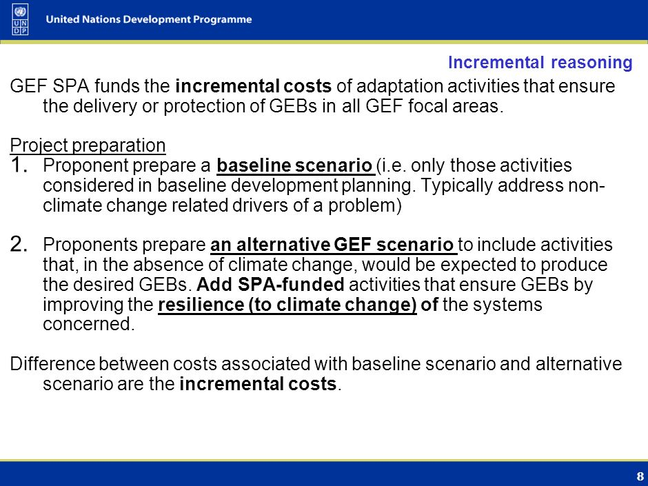 8 Incremental reasoning GEF SPA funds the incremental costs of adaptation activities that ensure the delivery or protection of GEBs in all GEF focal areas.