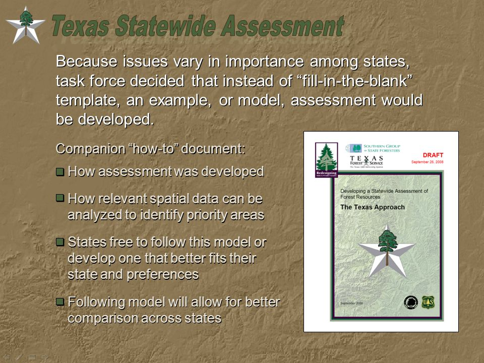 Because issues vary in importance among states, task force decided that instead of fill-in-the-blank template, an example, or model, assessment would be developed.