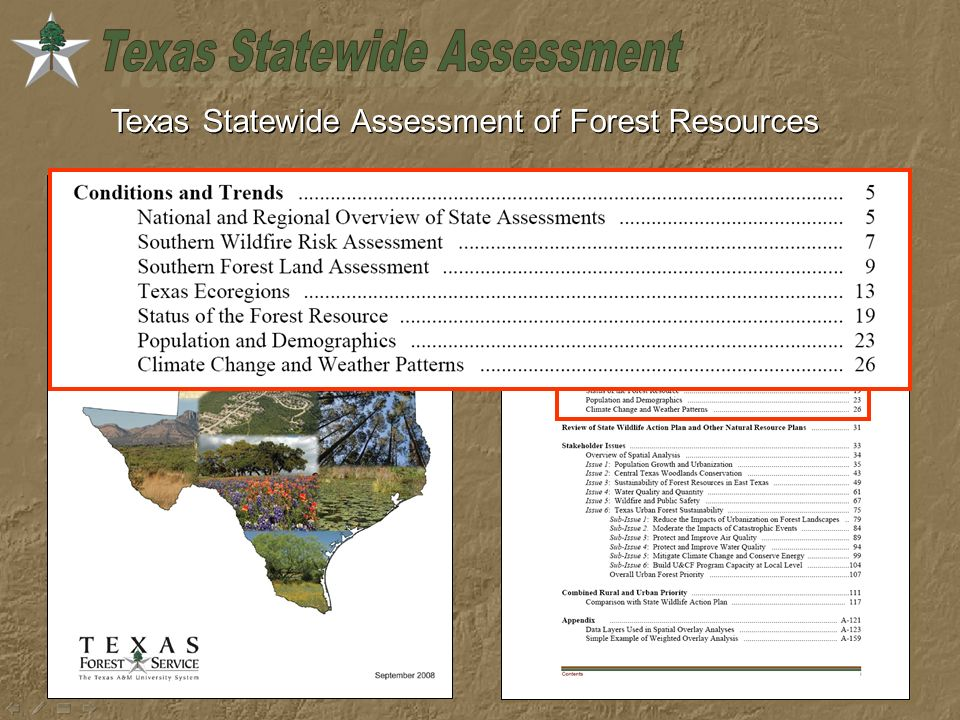 Texas Statewide Assessment of Forest Resources