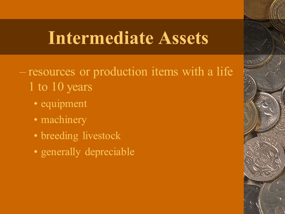 Intermediate Assets –resources or production items with a life 1 to 10 years equipment machinery breeding livestock generally depreciable