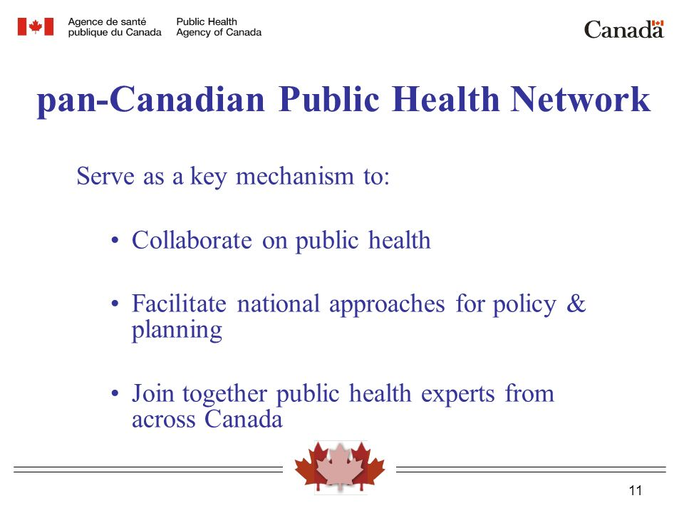 11 pan-Canadian Public Health Network Serve as a key mechanism to: Collaborate on public health Facilitate national approaches for policy & planning Join together public health experts from across Canada