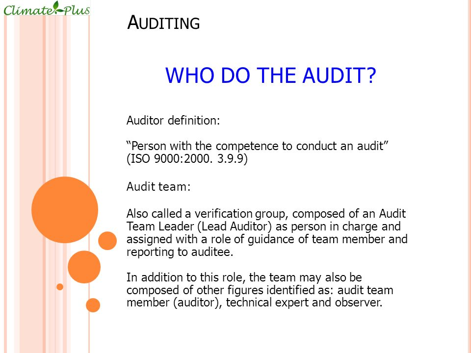 A UDITING WHO DO THE AUDIT.