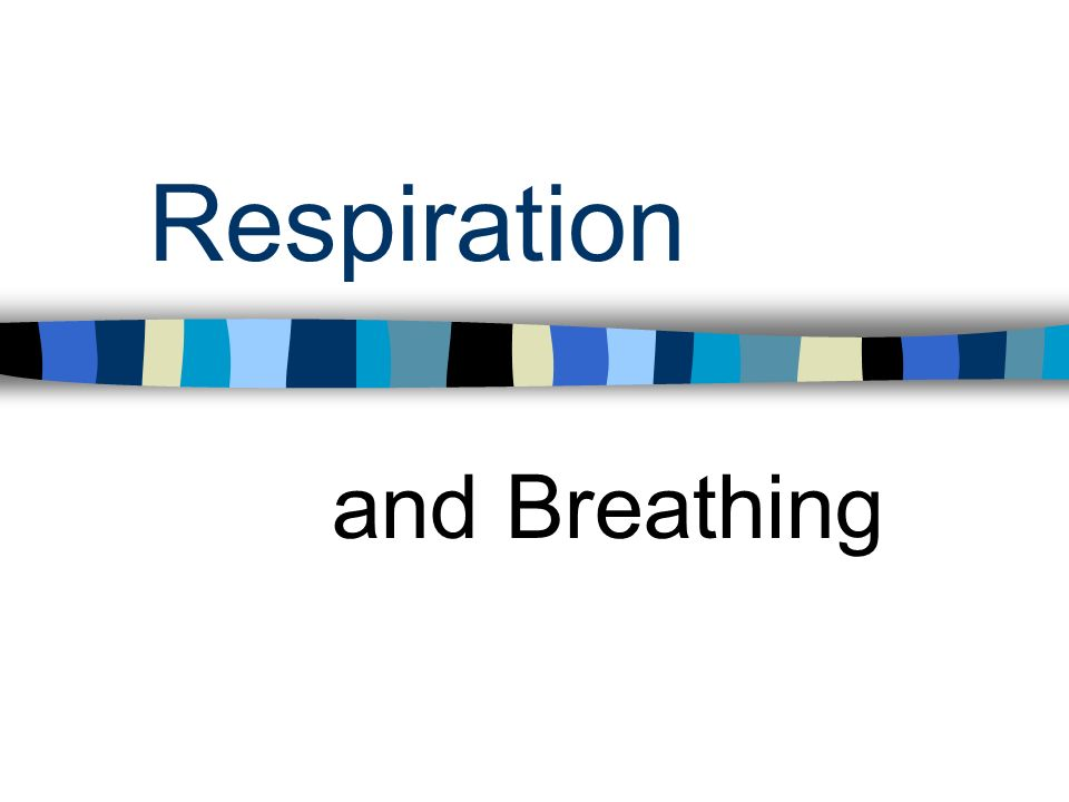 Respiration and Breathing
