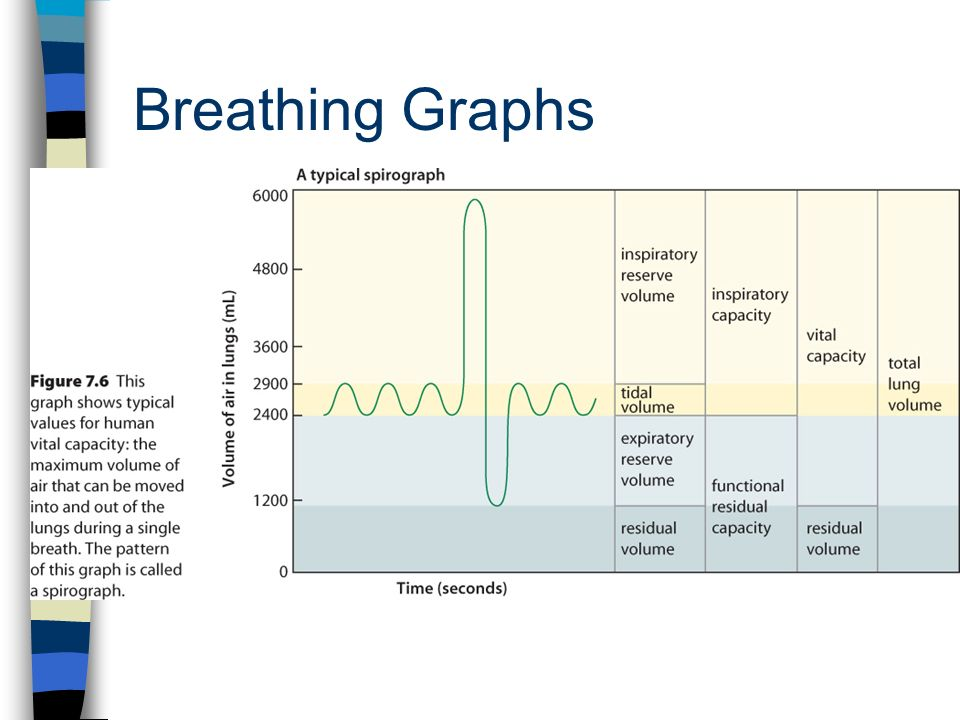 Breathing Graphs