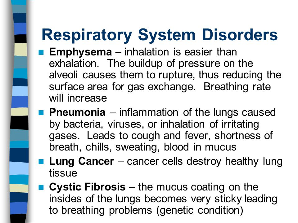 Respiratory System Disorders Emphysema – inhalation is easier than exhalation.