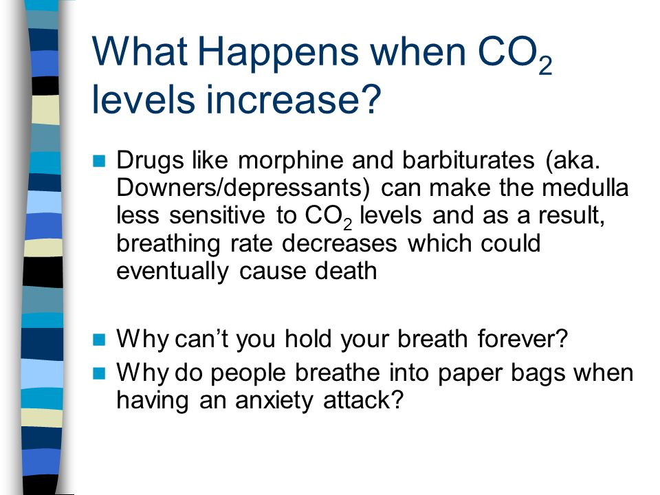 What Happens when CO 2 levels increase. Drugs like morphine and barbiturates (aka.