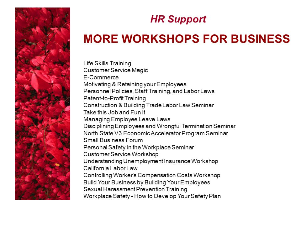 HR Support MORE WORKSHOPS FOR BUSINESS Life Skills Training Customer Service Magic E-Commerce Motivating & Retaining your Employees Personnel Policies, Staff Training, and Labor Laws Patent-to-Profit Training Construction & Building Trade Labor Law Seminar Take this Job and Fun It Managing Employee Leave Laws Disciplining Employees and Wrongful Termination Seminar North State V3 Economic Accelerator Program Seminar Small Business Forum Personal Safety in the Workplace Seminar Customer Service Workshop Understanding Unemployment Insurance Workshop California Labor Law Controlling Worker s Compensation Costs Workshop Build Your Business by Building Your Employees Sexual Harassment Prevention Training Workplace Safety - How to Develop Your Safety Plan