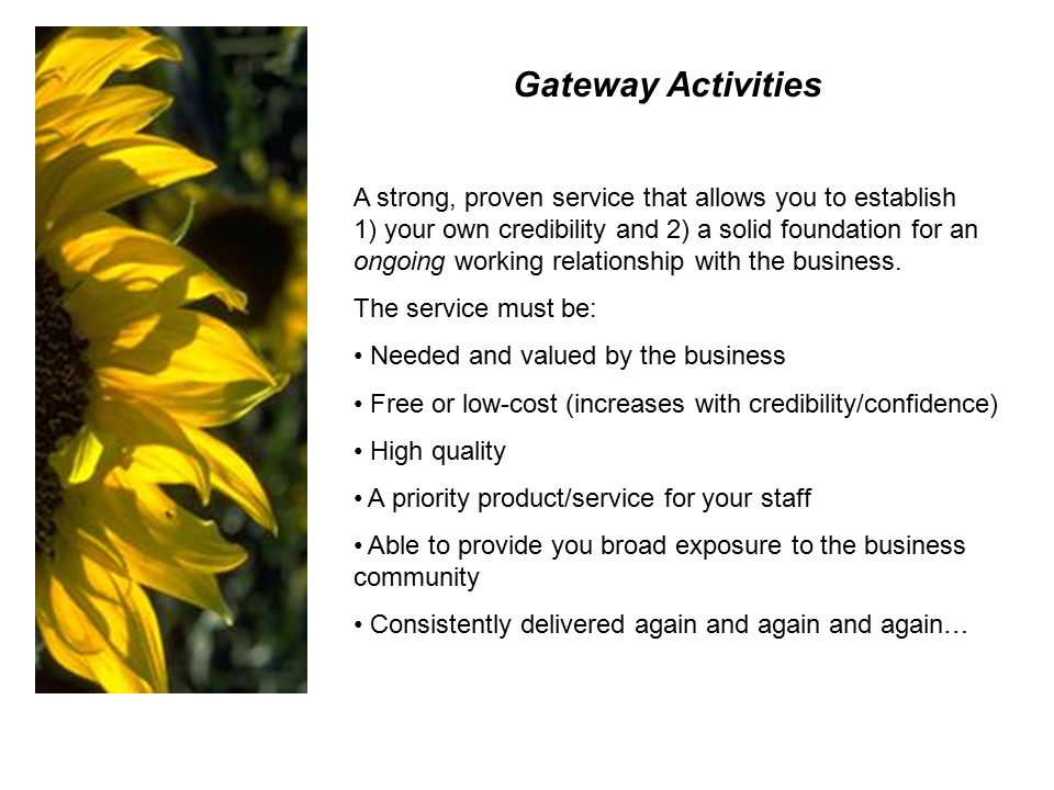 Gateway Activities A strong, proven service that allows you to establish 1) your own credibility and 2) a solid foundation for an ongoing working relationship with the business.
