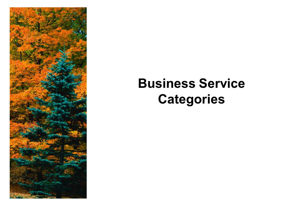 Business Service Categories