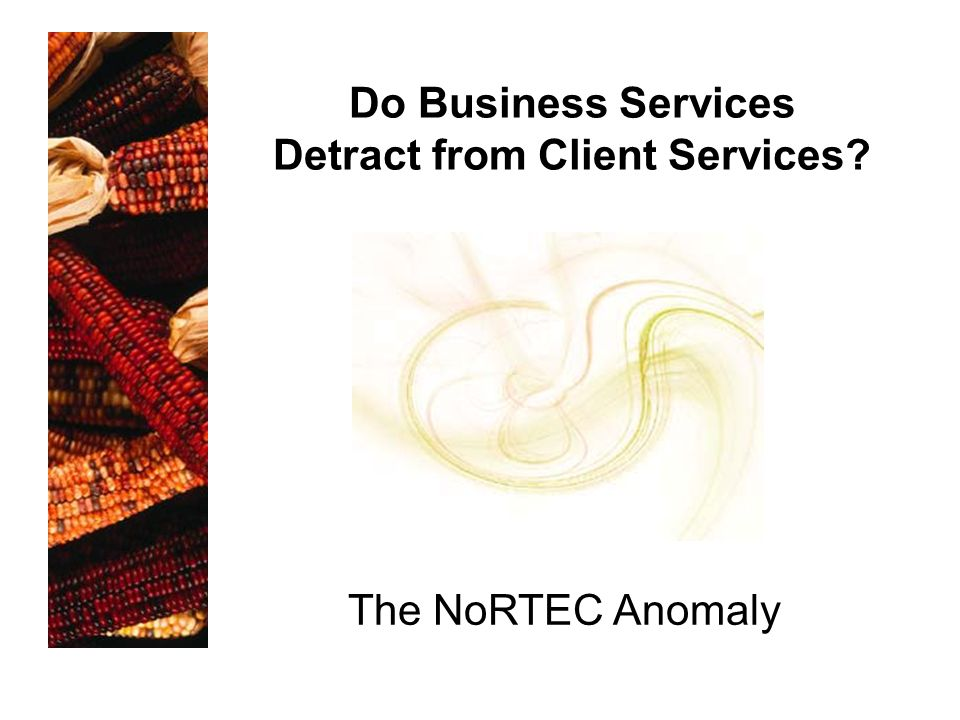 The NoRTEC Anomaly Do Business Services Detract from Client Services