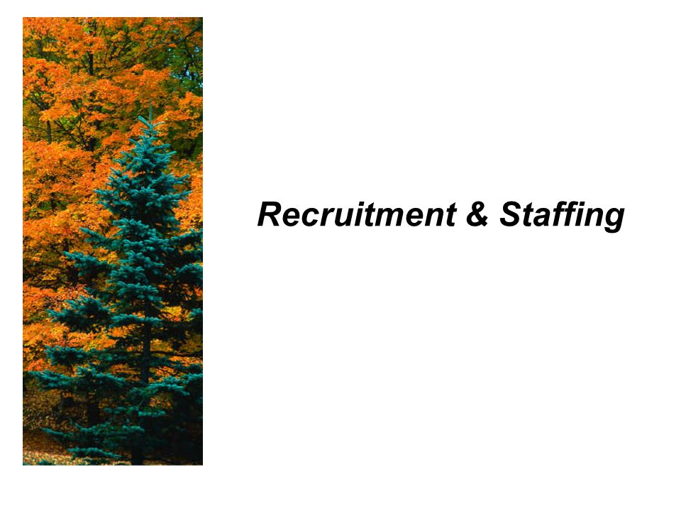 Recruitment & Staffing