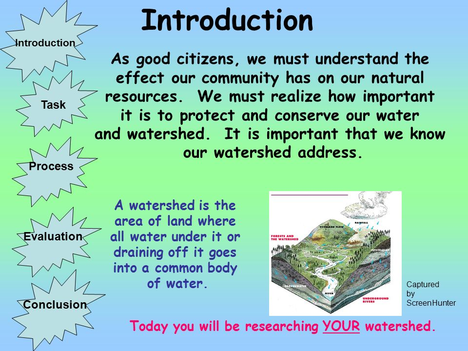 Essay On Environment Conservation