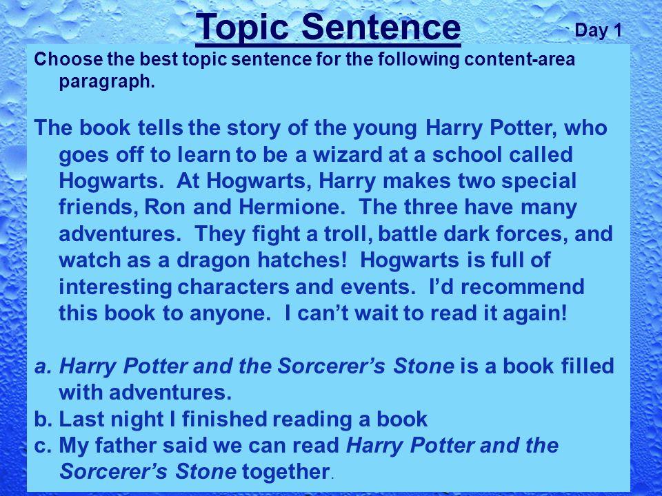 Ideas for Harry Potter Essay?