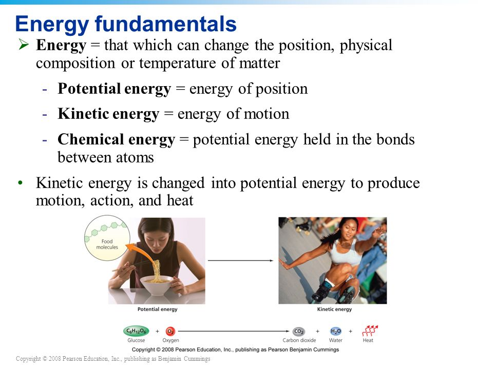 Copyright © 2008 Pearson Education, Inc., publishing as Benjamin Cummings Energy fundamentals  Energy = that which can change the position, physical composition or temperature of matter -Potential energy = energy of position -Kinetic energy = energy of motion -Chemical energy = potential energy held in the bonds between atoms Kinetic energy is changed into potential energy to produce motion, action, and heat