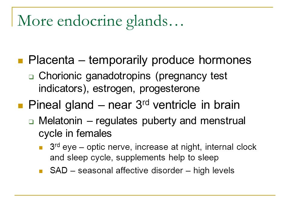 More endocrine glands… Placenta – temporarily produce hormones  Chorionic ganadotropins (pregnancy test indicators), estrogen, progesterone Pineal gland – near 3 rd ventricle in brain  Melatonin – regulates puberty and menstrual cycle in females 3 rd eye – optic nerve, increase at night, internal clock and sleep cycle, supplements help to sleep SAD – seasonal affective disorder – high levels