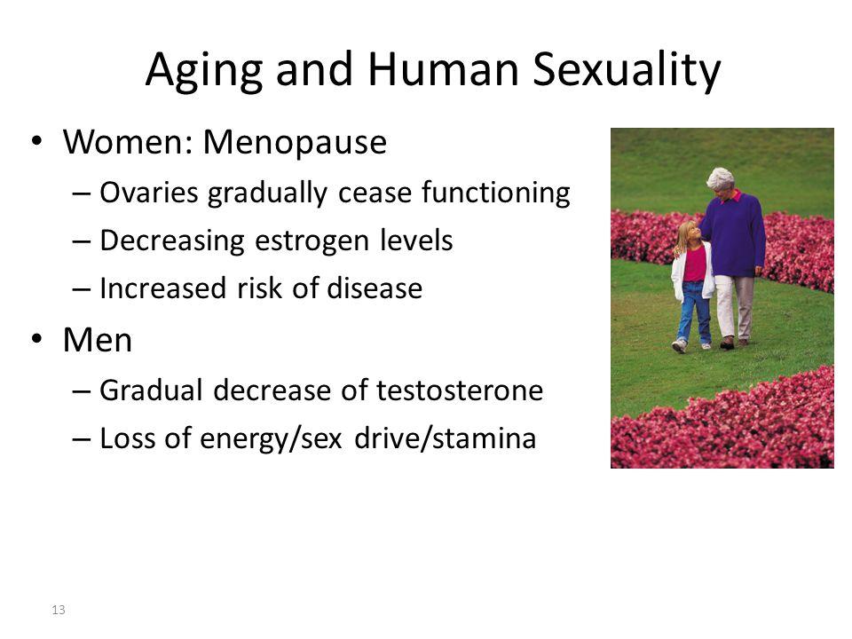 Aging and Human Sexuality 13 Women: Menopause – Ovaries gradually cease functioning – Decreasing estrogen levels – Increased risk of disease Men – Gra
