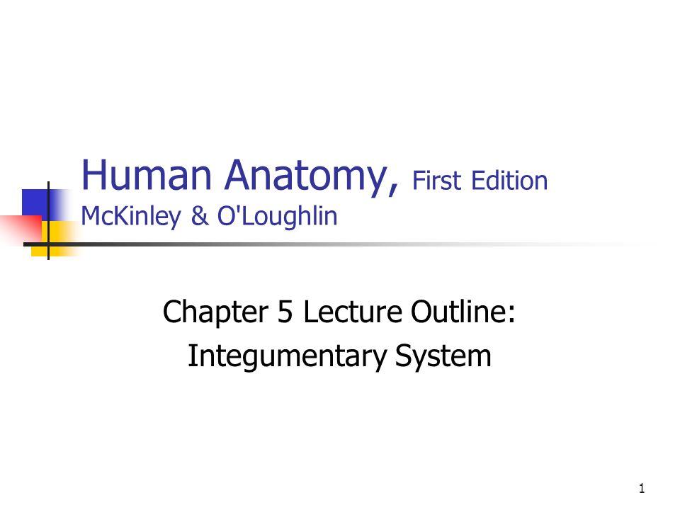 Fantastisch Human Anatomy And Physiology Amerman 1st Edition Pdf ...